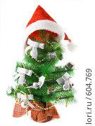 Купить «Украшенная новогодняя елочка в новогоднем колпаке», фото № 604769, снято 4 декабря 2008 г. (c) Ольга Красавина / Фотобанк Лори