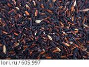 Купить «Черный рис», фото № 605997, снято 8 декабря 2008 г. (c) Ольга Кедрова / Фотобанк Лори