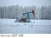 Купить «Насос для добычи нефти», фото № 607149, снято 7 января 2008 г. (c) Gagara / Фотобанк Лори