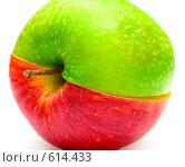 Купить «Две половинки разных яблок, сложенные в одно целое», фото № 614433, снято 28 октября 2008 г. (c) Виктория Кириллова / Фотобанк Лори