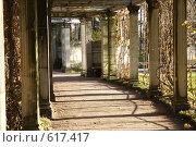 Екатерининский парк, город Пушкин (2008 год). Редакционное фото, фотограф Александр Комлев / Фотобанк Лори