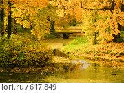 Купить «Золотая осень», фото № 617849, снято 29 сентября 2008 г. (c) Володина Светлана / Фотобанк Лори