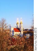 Купить «Солнечные блики на куполах церкви», фото № 620873, снято 24 января 2019 г. (c) Вадим Кондратенков / Фотобанк Лори