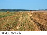 Купить «Следы на поле», фото № 620989, снято 26 августа 2008 г. (c) Виктор Уткин / Фотобанк Лори