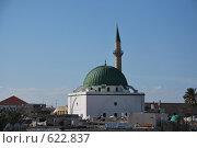 Купить «Мечеть», фото № 622837, снято 24 ноября 2008 г. (c) Zlataya / Фотобанк Лори