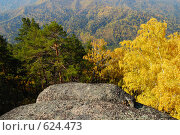 Горный Алтай. Осенний пейзаж. Стоковое фото, фотограф Юрий Бульший / Фотобанк Лори