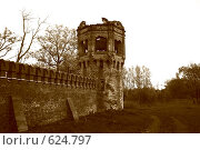 Царское Село. Башня Федоровскго городка (сепия) (2008 год). Стоковое фото, фотограф Володина Светлана / Фотобанк Лори