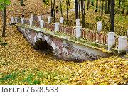Купить «Мост в осеннем лесу», фото № 628533, снято 12 октября 2008 г. (c) Александр Косарев / Фотобанк Лори