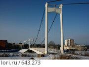 Купить «Парковый мост», фото № 643273, снято 2 января 2009 г. (c) Татьяна Лепилова / Фотобанк Лори