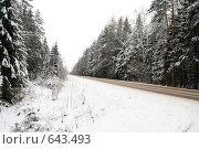 Купить «Зимняя дорога среди заснеженного леса», фото № 643493, снято 2 января 2009 г. (c) Медведева Мила / Фотобанк Лори