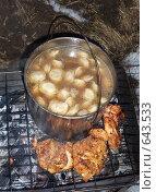 Купить «Пельмешки в котелке вместе с куриным мясом на мангале», фото № 643533, снято 3 января 2009 г. (c) Fro / Фотобанк Лори