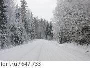Купить «Зимняя дорога», эксклюзивное фото № 647733, снято 4 января 2009 г. (c) Наталия Шевченко / Фотобанк Лори