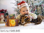 Купить «Встречаем Год Тигра», фото № 649845, снято 23 марта 2019 г. (c) Юлия Кузнецова / Фотобанк Лори