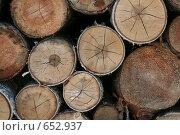 Купить «Дрова в поленнице», фото № 652937, снято 25 июня 2006 г. (c) Александр Ерёмин / Фотобанк Лори