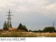Купить «Электропровода над лесом», фото № 652945, снято 3 июня 2006 г. (c) Александр Ерёмин / Фотобанк Лори