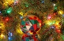 Новогодний сюжет, фото № 654069, снято 9 января 2009 г. (c) Наталья Волкова / Фотобанк Лори
