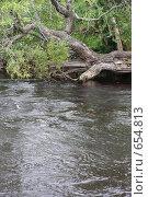 Карелия, река Выг. Стоковое фото, фотограф Лена Осадчая / Фотобанк Лори