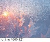 Купить «Мороз и солнце», фото № 660921, снято 1 марта 2006 г. (c) Dina / Фотобанк Лори