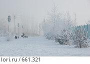 Купить «Зимняя тропинка», фото № 661321, снято 15 января 2009 г. (c) Кирилл Федорин / Фотобанк Лори