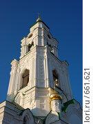 Купить «Кремль в Астрахани», фото № 661621, снято 21 декабря 2008 г. (c) Кирилл Федорин / Фотобанк Лори
