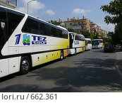 Купить «Ряд туристических автобусов TEZ TOUR», фото № 662361, снято 1 сентября 2008 г. (c) Алексей Стоянов / Фотобанк Лори
