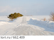 Снежная дорога. Стоковое фото, фотограф djandre77 / Фотобанк Лори