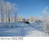 Купить «Зима на острове Юности. Иркутск», фото № 662565, снято 11 января 2009 г. (c) Мария Николаева / Фотобанк Лори