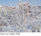 Зимняя зарисовка. Стоковое фото, фотограф Виктор Юсупов / Фотобанк Лори