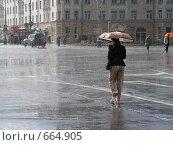 Солнечный ливень. Стоковое фото, фотограф Дмитрий Хрусталев / Фотобанк Лори