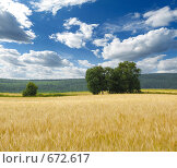 Купить «Осенний пейзаж», фото № 672617, снято 3 августа 2008 г. (c) Юрий Бельмесов / Фотобанк Лори