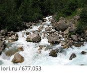 Купить «Река Гега», фото № 677053, снято 9 июля 2008 г. (c) Vladimir Semushin / Фотобанк Лори