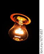 Купить «Лампочка», фото № 677657, снято 23 июня 2007 г. (c) Боев Дмитрий / Фотобанк Лори
