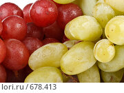 Купить «Фон из свежего красного и зеленого винограда с каплями воды», фото № 678413, снято 24 августа 2008 г. (c) Мельников Дмитрий / Фотобанк Лори