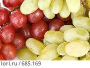 Купить «Фон из свежего красного и зеленого винограда с каплями воды», фото № 685169, снято 24 августа 2008 г. (c) Мельников Дмитрий / Фотобанк Лори