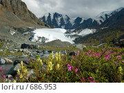 Купить «Ледник Маашей. Горный Алтай.», фото № 686953, снято 23 июля 2008 г. (c) Селигеев Андрей Иванович / Фотобанк Лори