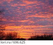 Купить «Осенний закат», фото № 696625, снято 25 октября 2008 г. (c) Нина Солнцева / Фотобанк Лори