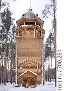 Купить «Урочище Ганина яма. Мужской монастырь», фото № 700261, снято 3 февраля 2009 г. (c) Parmenov Pavel / Фотобанк Лори