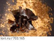 Китайские черные грибы. Стоковое фото, фотограф Наталья Ярошук / Фотобанк Лори