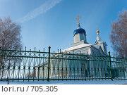 Купить «Церковь за оградой», фото № 705305, снято 1 февраля 2009 г. (c) Шахов Андрей / Фотобанк Лори