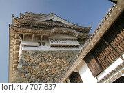 Купить «Замок Белой Цапли Сиросагидзё. Япония», фото № 707837, снято 24 ноября 2007 г. (c) Просенкова Светлана / Фотобанк Лори