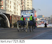 Купить «Москва. Конная милиция на Манежной площади», эксклюзивное фото № 721825, снято 24 февраля 2009 г. (c) lana1501 / Фотобанк Лори