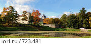 Купить «Осенняя панорама Гатчинского дворца и парка», фото № 723481, снято 23 сентября 2007 г. (c) Александр Чернышёв / Фотобанк Лори