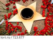Купить «Военные захоронения на Преображенском кладбище в Москве. Вечный огонь.», фото № 723877, снято 21 февраля 2009 г. (c) Александр Чистяков / Фотобанк Лори