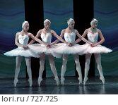 Русский балет: Танец маленьких лебедей, фото № 727725, снято 27 декабря 2008 г. (c) Дмитрий Черевко / Фотобанк Лори
