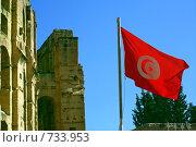Купить «Флаг Туниса,  развевающийся рядом со стеной Колизея», фото № 733953, снято 21 мая 2008 г. (c) Aleksander Kaasik / Фотобанк Лори
