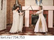 Купить «Девушки в рыцарском замке», фото № 734753, снято 8 февраля 2009 г. (c) Евгений Батраков / Фотобанк Лори
