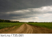 Купить «Грунтовая дорога в поле», эксклюзивное фото № 735081, снято 8 июня 2008 г. (c) Литвяк Игорь / Фотобанк Лори