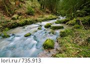 Купить «Ручей в осеннем лесу», фото № 735913, снято 15 марта 2008 г. (c) Александр Телеснюк / Фотобанк Лори