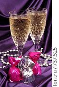 Купить «Бокал с шампанским», фото № 737525, снято 5 января 2009 г. (c) Елена Иценко / Фотобанк Лори