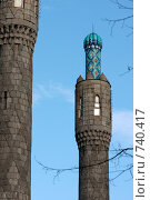 Купить «Минареты соборной мечети», фото № 740417, снято 7 марта 2009 г. (c) Nikiandr / Фотобанк Лори